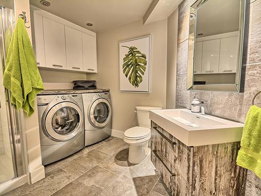 Salle de lavage fougère